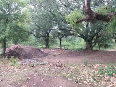 LOTE 001 - Área de terras c/ aproximadamente 36ha em Porto Alegre/RS - Bairro Alto Petrópolis